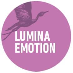 lumina-emotion-organisational-development-circles-think-forward
