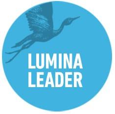 lumina-leader-organisational-development-circles-think-forward