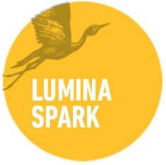 lumina-spark-organisational-development-circles-think-forward