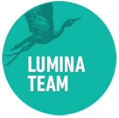 lumina-team-organisational-development-circles-think-forward